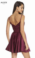 3848 Black Cherry back
