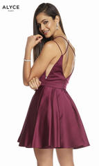 3876 Black Cherry back