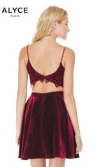 4038 Black Cherry back