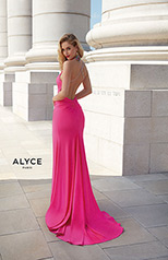 60955 Barbie Pink back