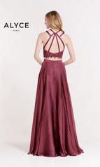 6844 Black Cherry back