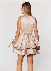 4045 Rose Gold back