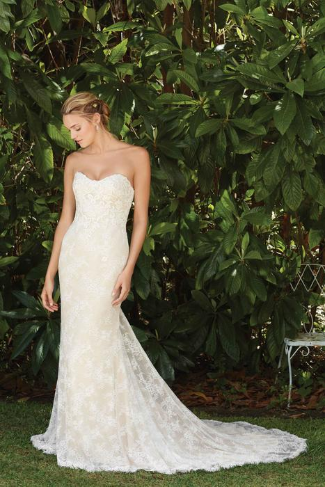Forsythia - Casablanca Bridal