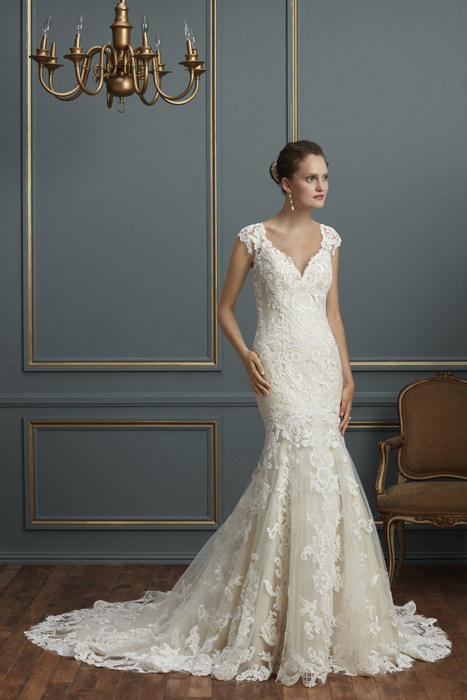 Couture Bridal Gowns