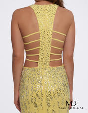 66874A Lemon back