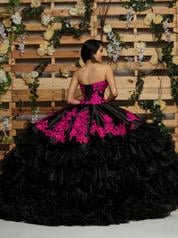 80411 Black/Cerise back