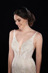 1066 Ivory Silver Lace/Ivory Tulle/Honey Gown/Ivory Tul detail