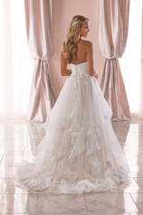 6765 Tulle/Royal Organza/Moscato Gown back