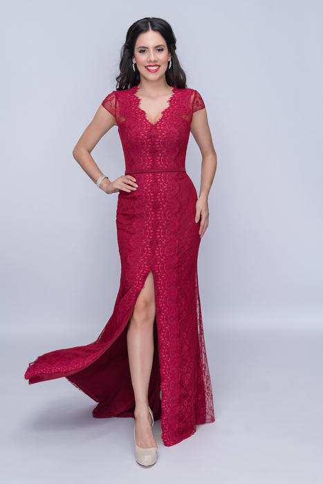 Nina Cannacci - Short Sleeve Lace Gown