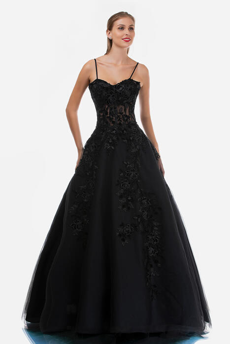Nina Cannacci - Mesh Embroidered Gown