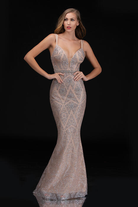 Nina Cannacci - Mesh Metallic Beaded Embroidered Gown