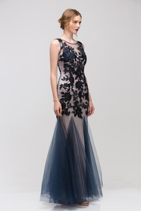 Fashion Eureka - Embroidered Lace Fit & Flare Gown
