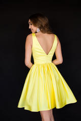 6023 Yellow back