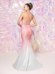 12803 Blush Ombre back