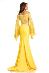 7244 Yellow/Nude back