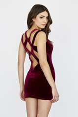 18550 Wine Ombre back