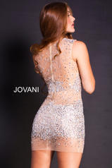 39825 Silver/Nude back