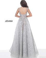 00898 Silver back
