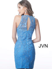 JVN1290 Blue back