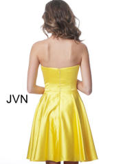 JVN1717 Yellow back