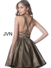 JVN2364 Bronze back