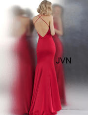 JVN55642 Ruby back