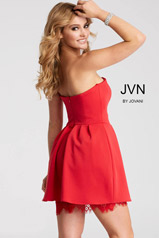 JVN45005 Red back