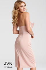 JVN55656 Blush back