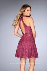 25099 Boysenberry back