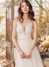 9SC899 Champagne/Ivory Ombre Shimmer gown with Nude Illus detail