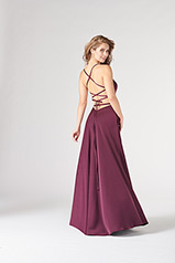 CL19806 Plum back