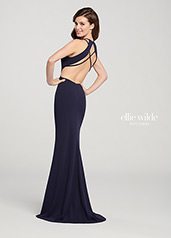 EW119159 Navy Blue back