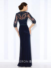 116672 Navy Blue back