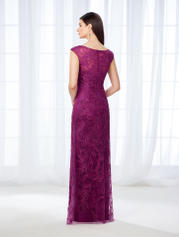 118676 Dark Raspberry back