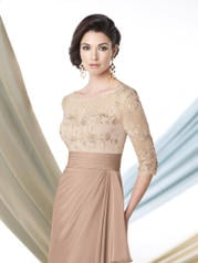 213969 Light Taupe front