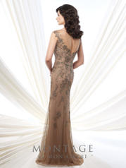 215913 Taupe back