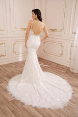 Y22053 Ivory/French Beige back