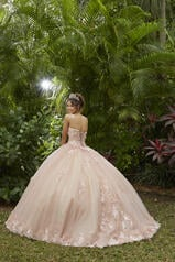 89286 Blush/Champagne back