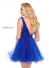 40038 Royal back