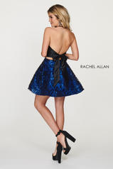 4613 Black/Royal back