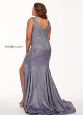 6697  /  h132c Lilac back