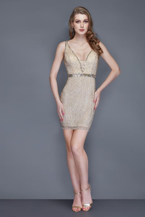 Primavera Couture - V-Neck Tulle Beaded Dress