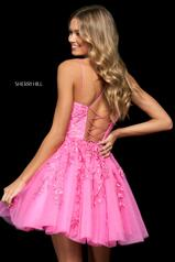 53982 Bright Pink back