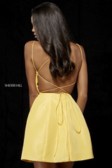 52154 Yellow back