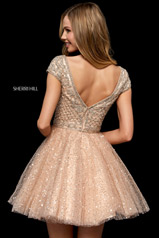 52273 Nude/Silver back