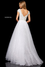 52276 Ivory/Silver back