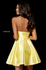 52379 Yellow back