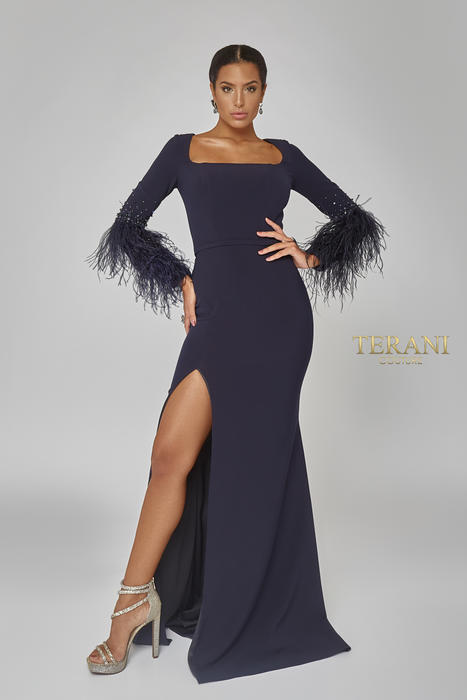 Terani - Long Feathered Sleeved Gown