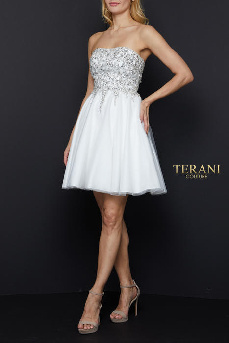 Terani - Mesh Beaded Bodice Dress