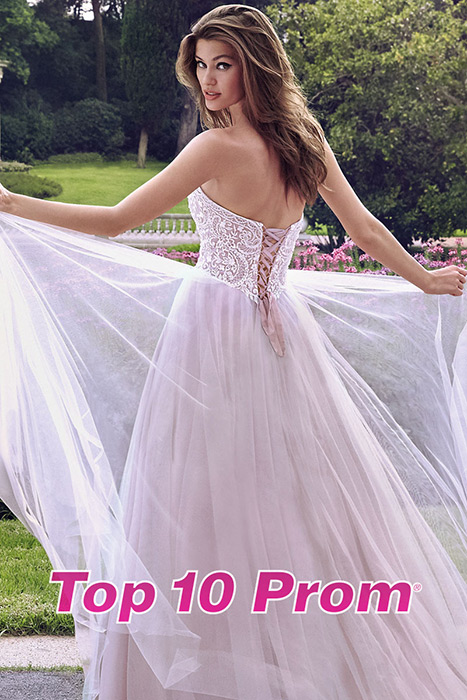 Top 10 Prom 2019 Catalog-Alyce Paris